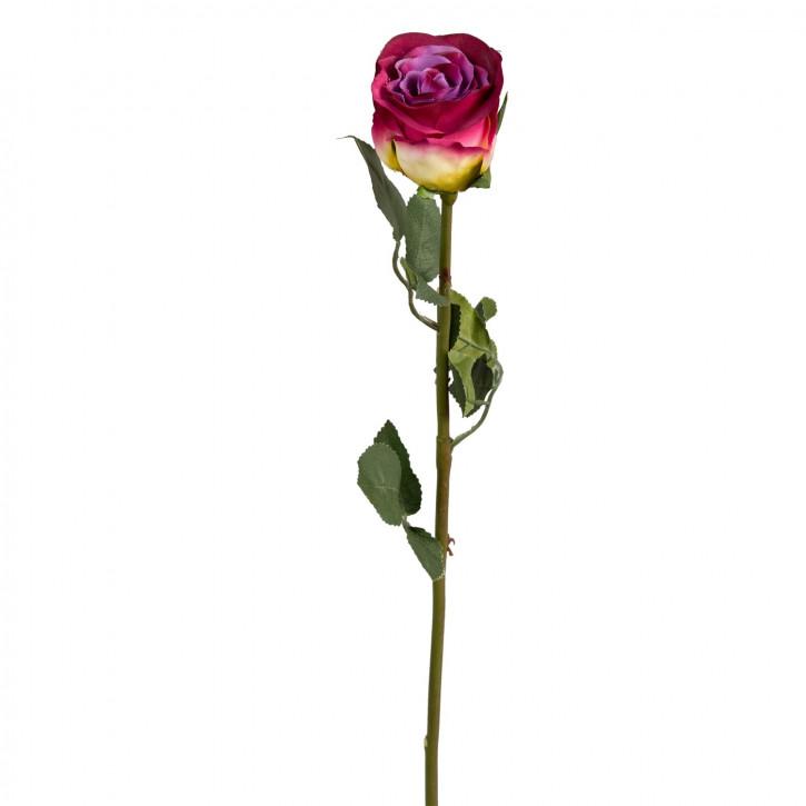 Deko Rosa mit Farbverlauf 60cm