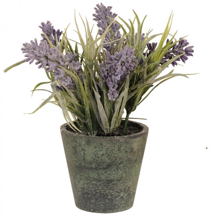 Deko Lavendel im Blumentopf 7*15cm