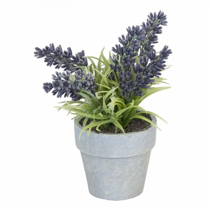 Deko Lavendel im Blumentopf 23cm