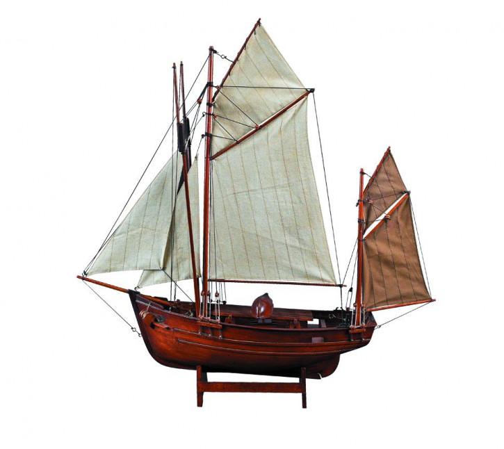 Schiff - Thornier