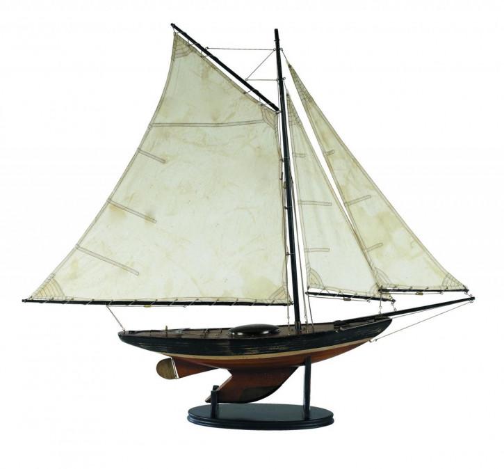 Schiff - Newport Sloop