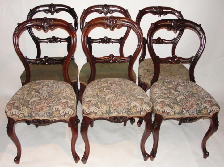 6 Stk original viktorianische Palisander Küchenstühle englisch ca 1845