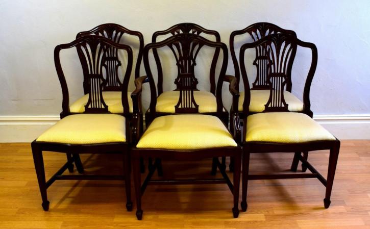 6 Stk origina antike Hepplewhite Stühle Mahagoni Küchenstühle englisch ca 1900