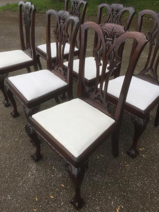 6 Stk original antike Mahagoni Stühle Chippendale Küchenstühle englisch ca 1900