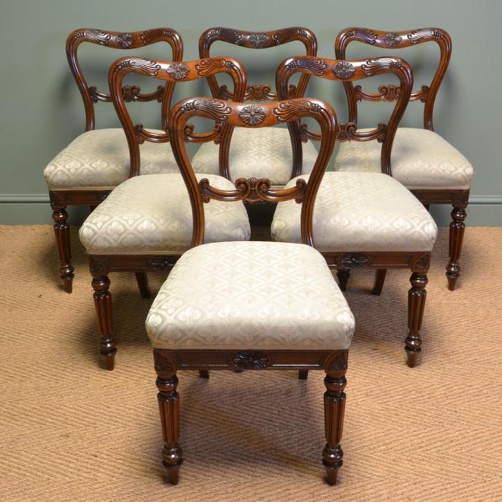 6 Antike Englische William IV. Palisander Stühle von Gillows ca. 1835