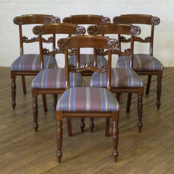 6 William IV. Antike Englische Mahagoni Stühle ca. 1835