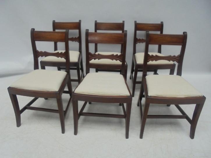 6 Regency Antike Englische Mahagoni Stühle ca. 1820