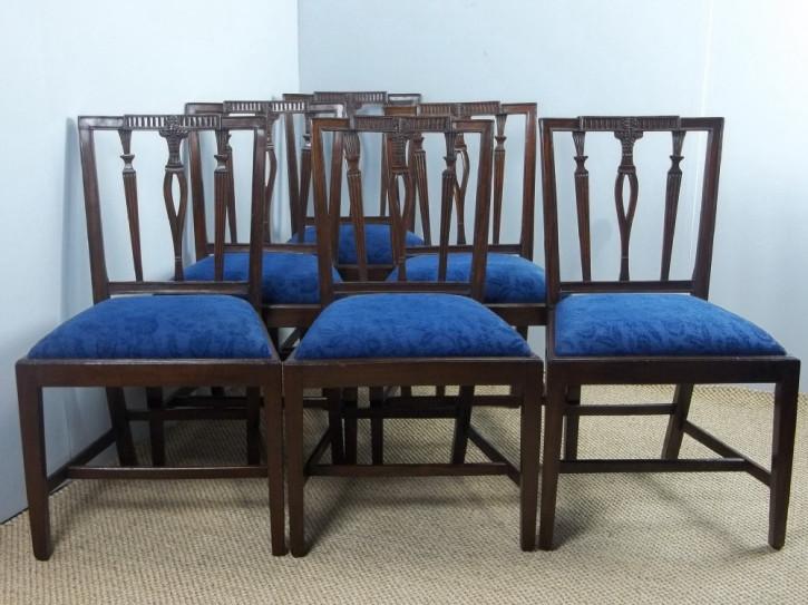 6 Edwardianische Antike Englische Mahagoni Esszimmerstühle ca. 1910