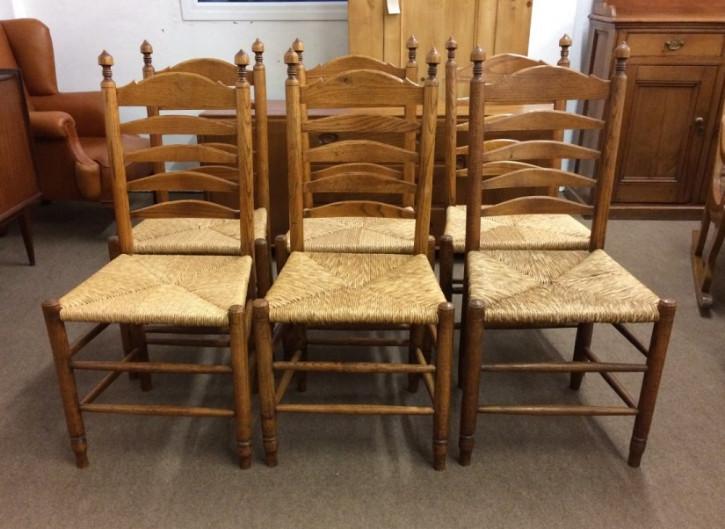 6 Antike Englische Eichen Landhaus Stühle ca. 19. Jh.