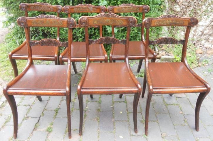 6 Regency Antike Englische Palisander Esszimmerstühle ca. 1820