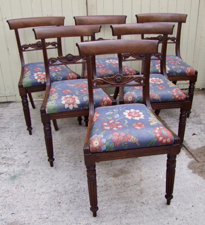 Antike englische Mahagoni Stühle original 19. Jh
