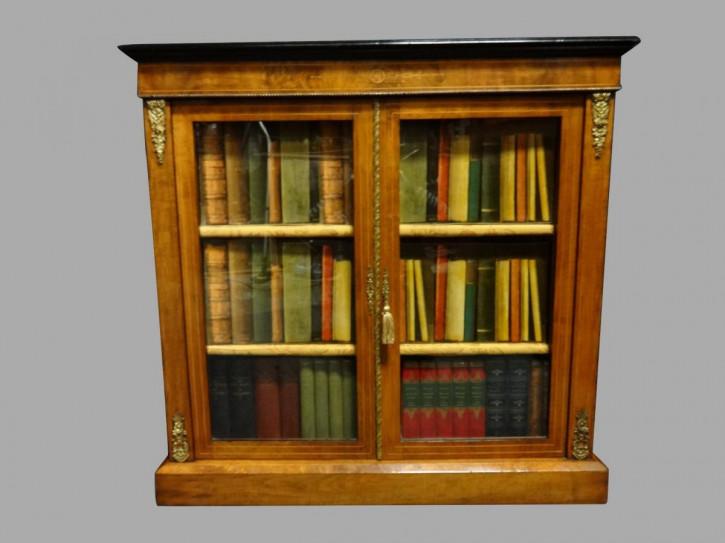 Viktorianisches antikes Nussbaum Bücherregal Vitrine britisch ca 1880