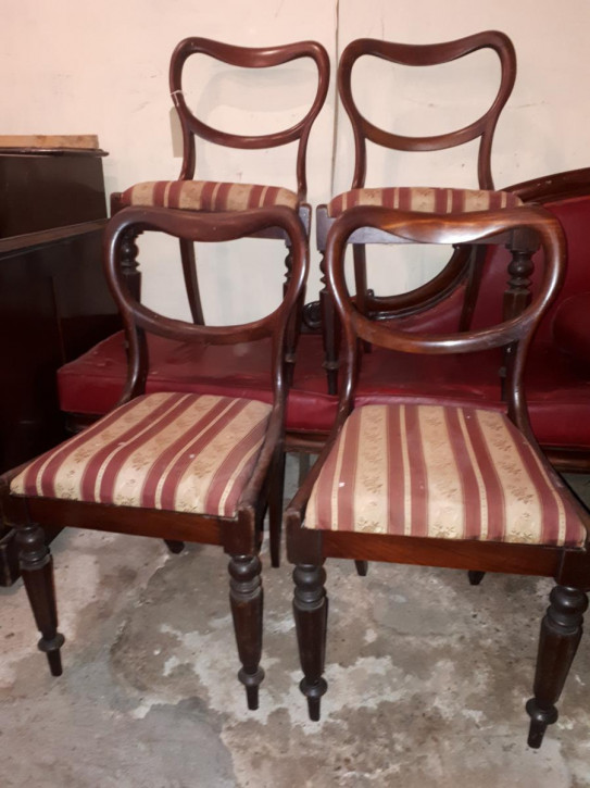 Viktorianische antike Mahagoni Stühle englisch ca 1850