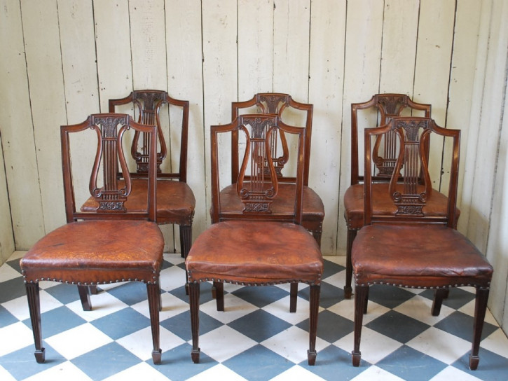 Antike britische Mahagoni Stühle ca 1880