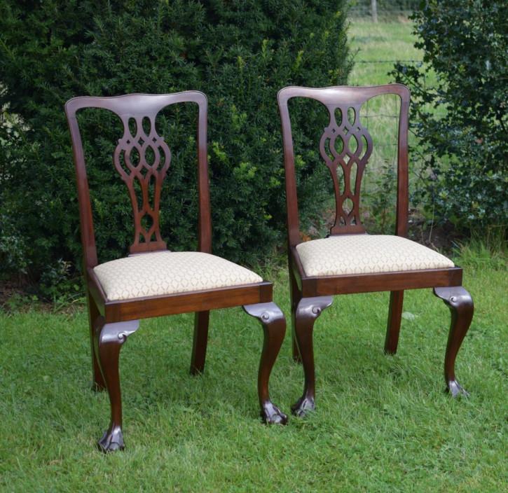 2er Satz antiker Chippendale Beistellstühle Side Chairs aus Mahagoni ca 1900