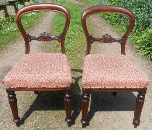 Paar antiker viktorianischer Stühle Dining Chairs aus Mahagoni ca 1850