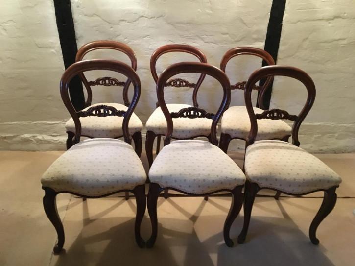 Satz von sechs Palisander Stühlen antik viktorianisch