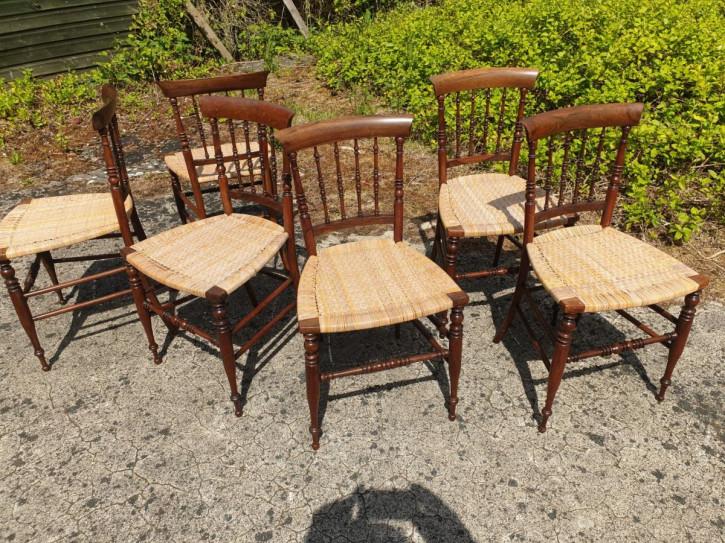 Sechs Palisander Stühle Massivholz antik 19. Jahrhundert