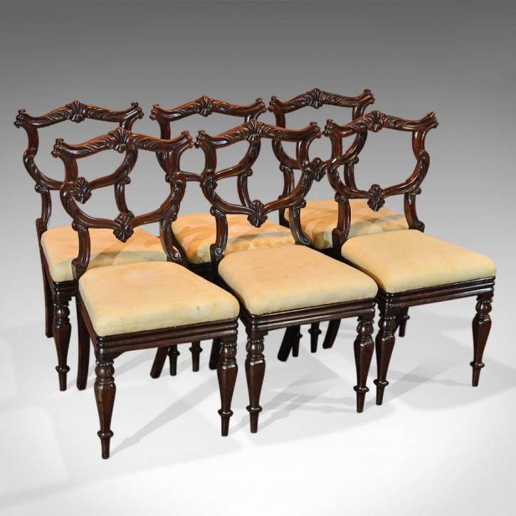 Set mit sechs antiken Stühlen, Palisander, William IV