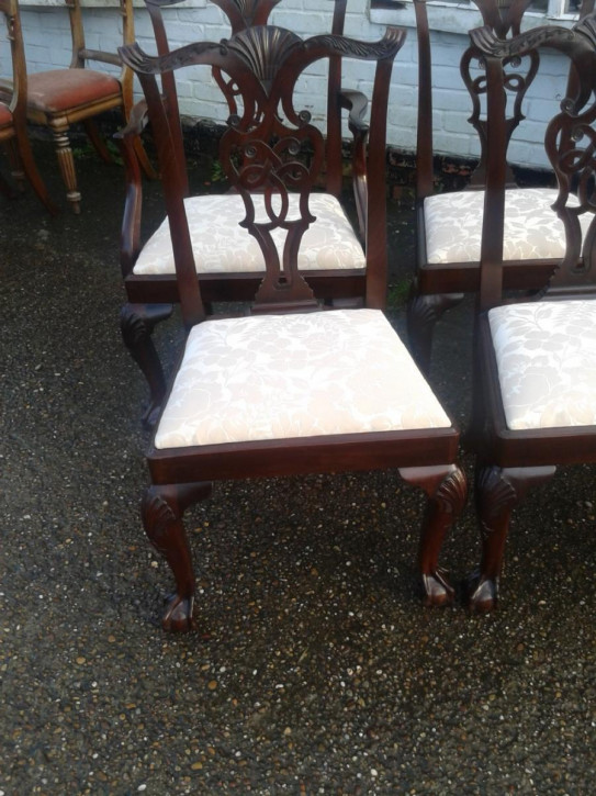 Antike Mahagoni Chippendale Esszimmer Stühle ca 1900