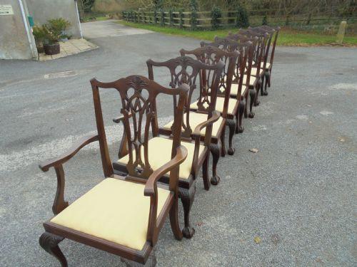 Antike Mahagoni Chippendale Esszimmer Stühle englisch 19. Jh