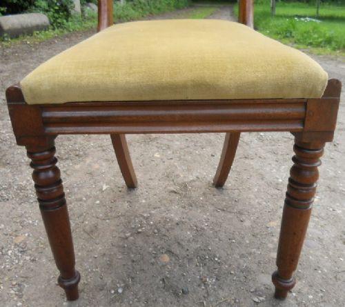 6 Georgianische Antike Englische Mahgoni Esszimmerstühle ca. 1800