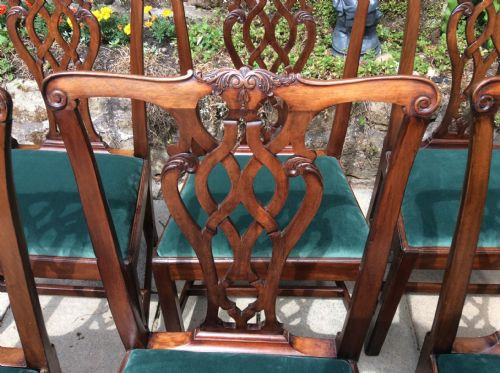 6 Georgianische Antike Englische Mahagoni Stühle ca. 1750