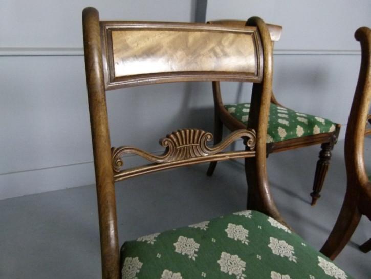 6 Regency Antike Englische Harlekin Palisander Stühle ca. 1815