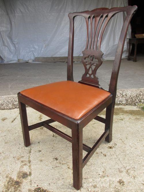 Antike britische Mahagoni Stühle Chippendale ca 19. Jh