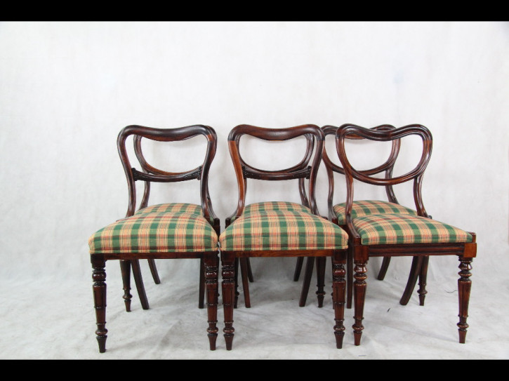 Set of 6 Chairs  Ballonbackchairs Ballonstühle Mahagoni 1860 Original