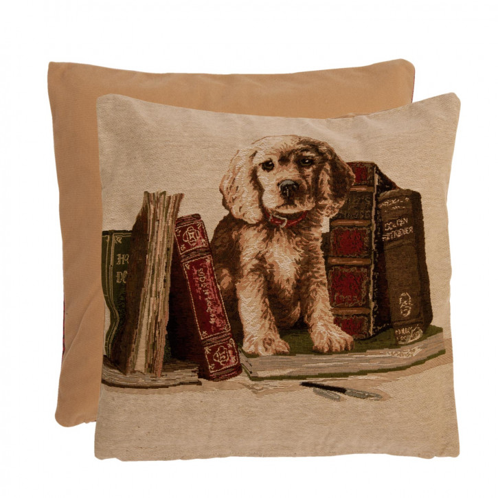 Kissenhülle Hund Bücher ca. 40 x 40 cm
