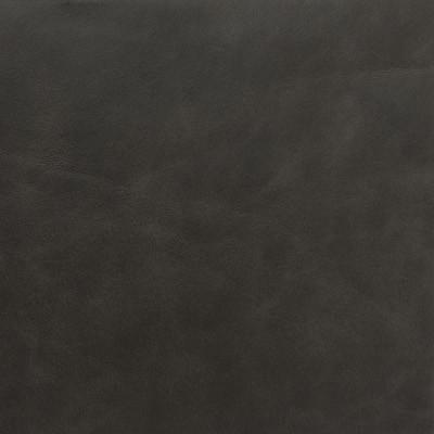 Lederprobe Legacy Destroyed-Black