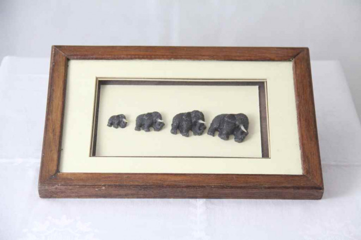 Bild Mammute France