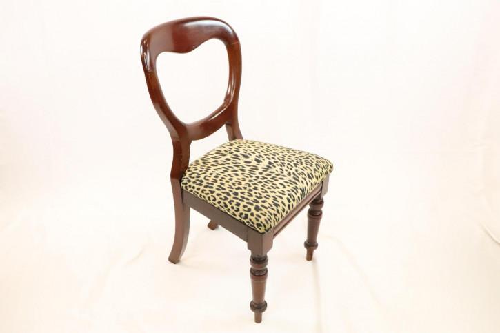 Antiker Mahagoni Stuhl mit Balloon Back, viktorianisch    8 Stühle vorhanden