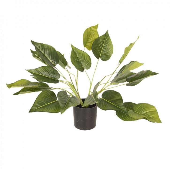 Dekoration Zimmerpflanze 46 cm