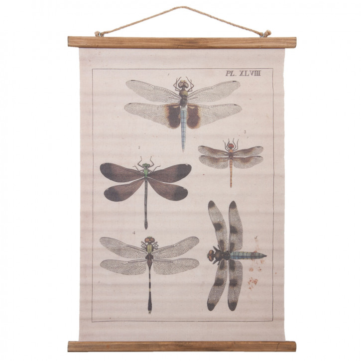 Wandkarte 54x2x75 cm