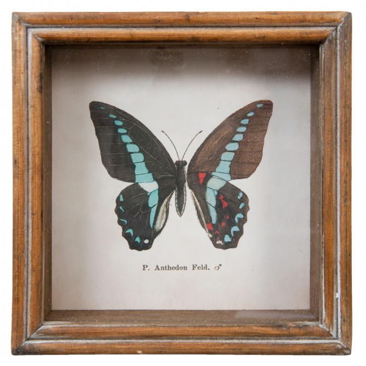 "Wandbild ""Schmetterling"" 18x5x18 cm"