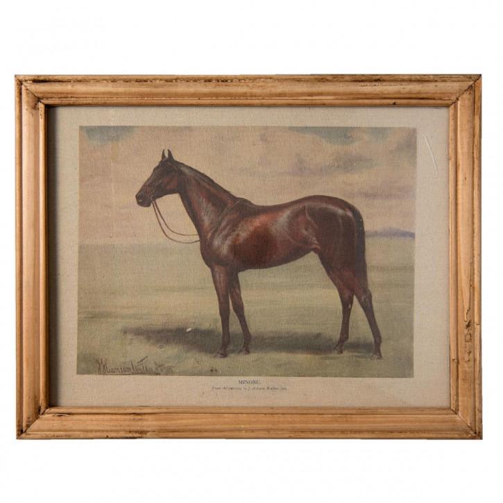 "Bild ""Pferd"" mit Rahmen 46x2x36 cm"