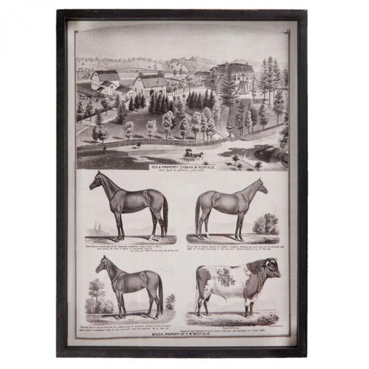 """Bild Wandbild """"Horses"""" 42x3x58 cm"""