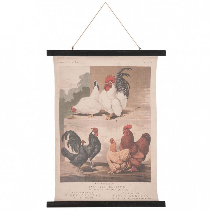 Wandkarte Hühne 55x2x75 cm