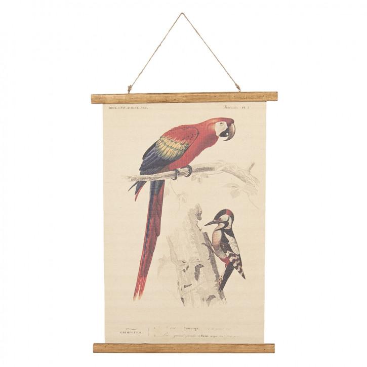 Wandkarte Vögel 50x2x70 cm
