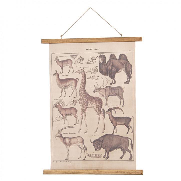 Wandkarte Tiere 55x2x70 cm