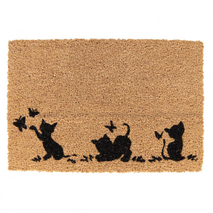 Doormat 60x40x1 cm
