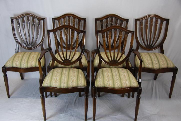 6er Satz  Stühle georgian Style Mahagoni England