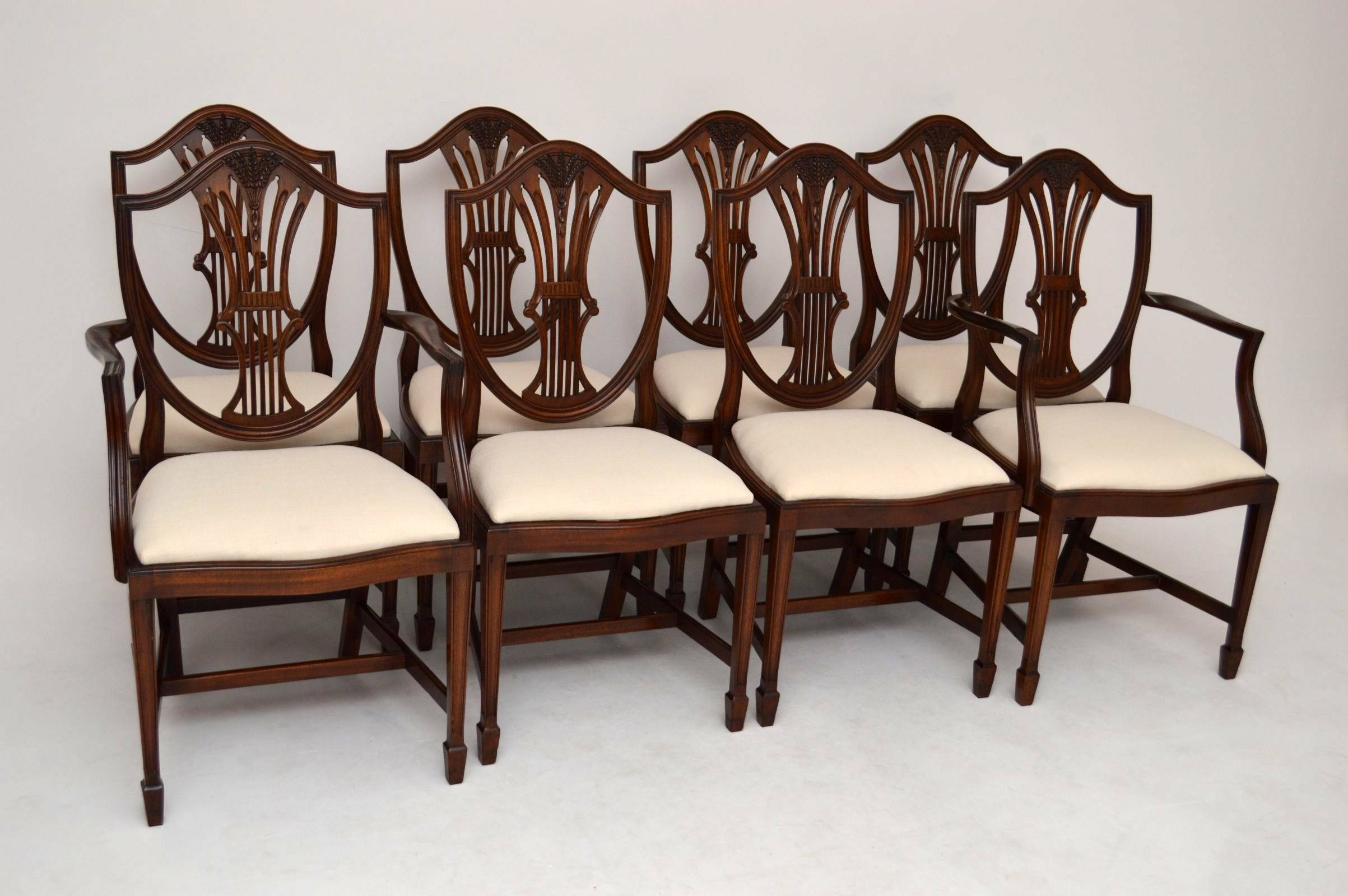 Eßzimmerstühle 8er satz antike georgian stühle eßzimmerstühle
