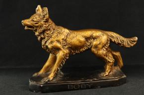 Statur Schäferhund Gold